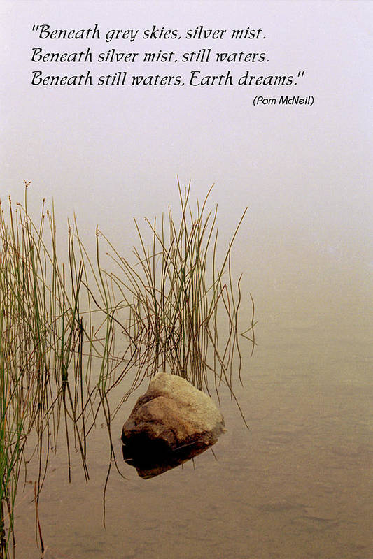 Fog Art Print featuring the photograph Haiku Poster by Roger Soule