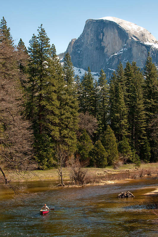 Yosemite Art Print featuring the photograph Half Dome Yosemite by Tom Dowd