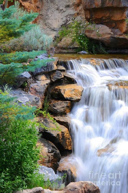 Waterfall Art Print featuring the photograph Hammer's Cascade by Dennis Hammer