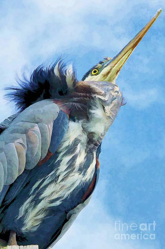 Heron Art Print featuring the photograph Heron by Nancy Morgantini