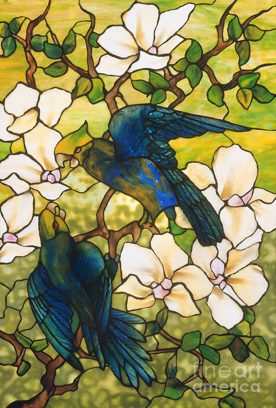 Tiffany Art Print featuring the glass art Hibiscus And Parrots by Louis Comfort Tiffany