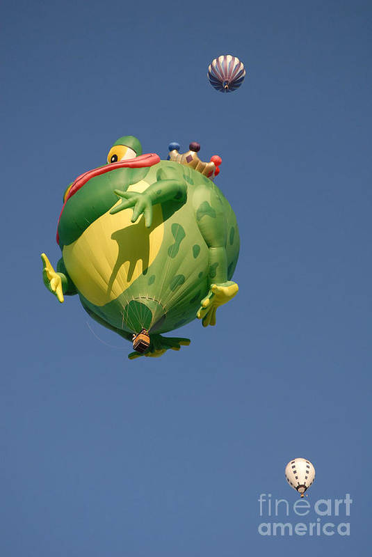 Hot Air Balloon Art Print featuring the photograph Hot Frog by Dennis Hammer