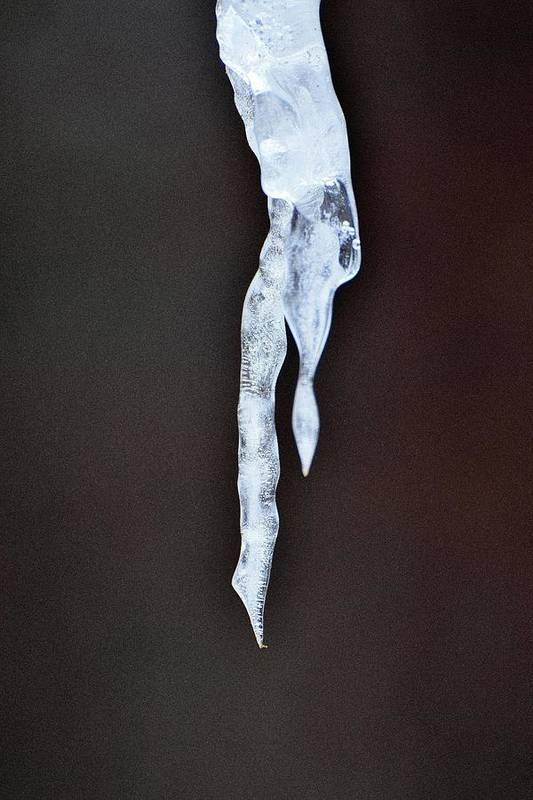 Ice Art Print featuring the photograph Ice Art 52 by Lawrence Hess