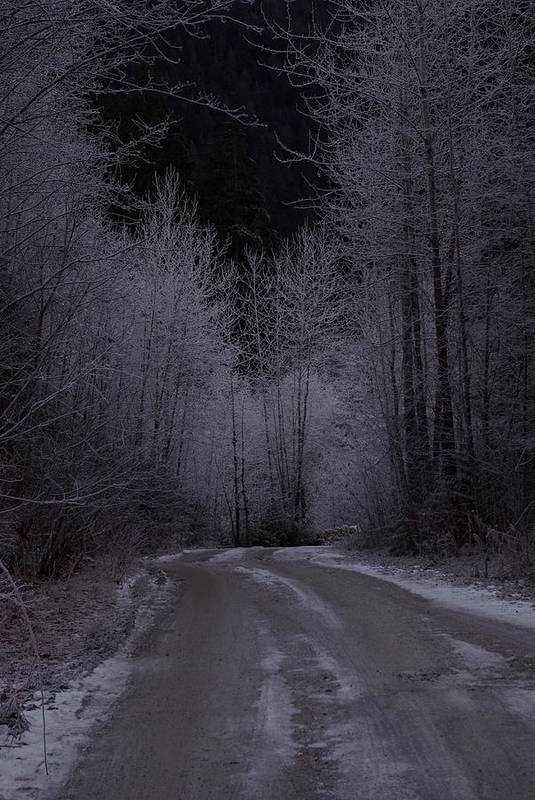 Ice Art Print featuring the photograph Ice Road by Cindy Johnston