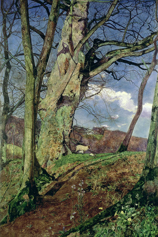 In Early Spring: A Study In March (oil On Canvas) By John William Inchbold (1830-88) Print featuring the painting In Early Spring by John William Inchbold