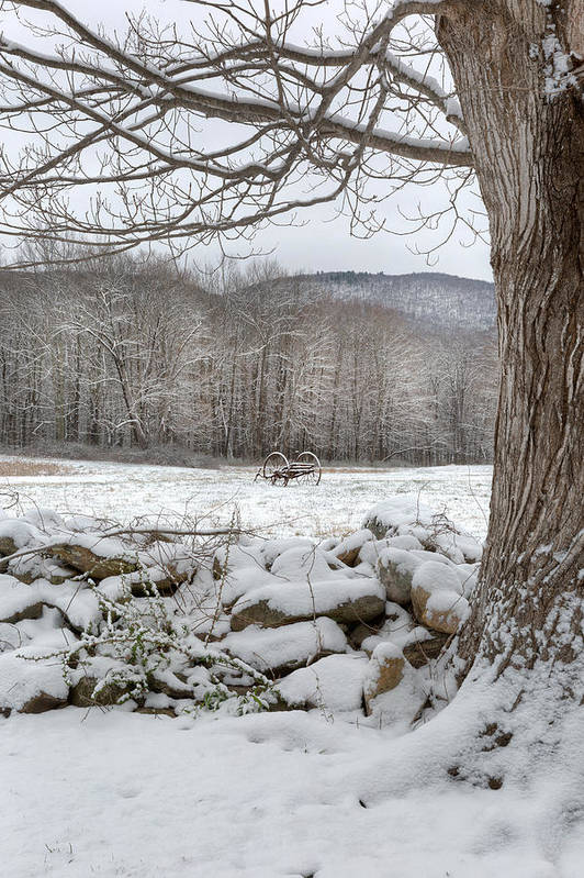 Winter Art Print featuring the photograph In The Field by Bill Wakeley