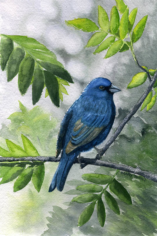 Blue Art Print featuring the painting Indigo Bunting by Mary Tuomi