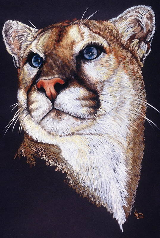 Cougar Art Print featuring the drawing Intense by Barbara Keith