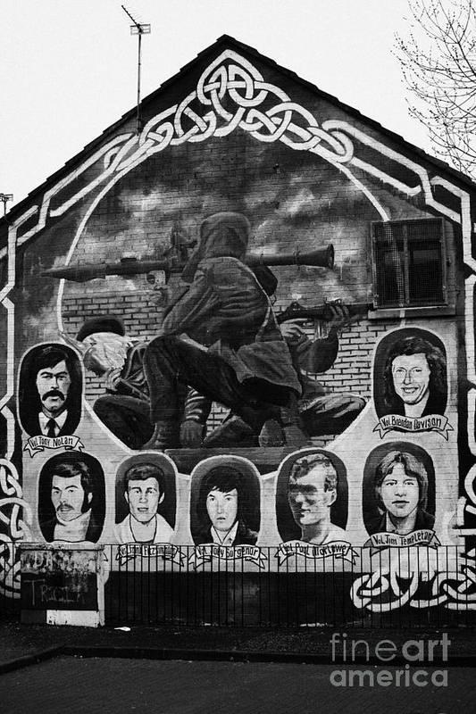 Belfast Art Print featuring the photograph Ira Wall Mural Belfast by Joe Fox