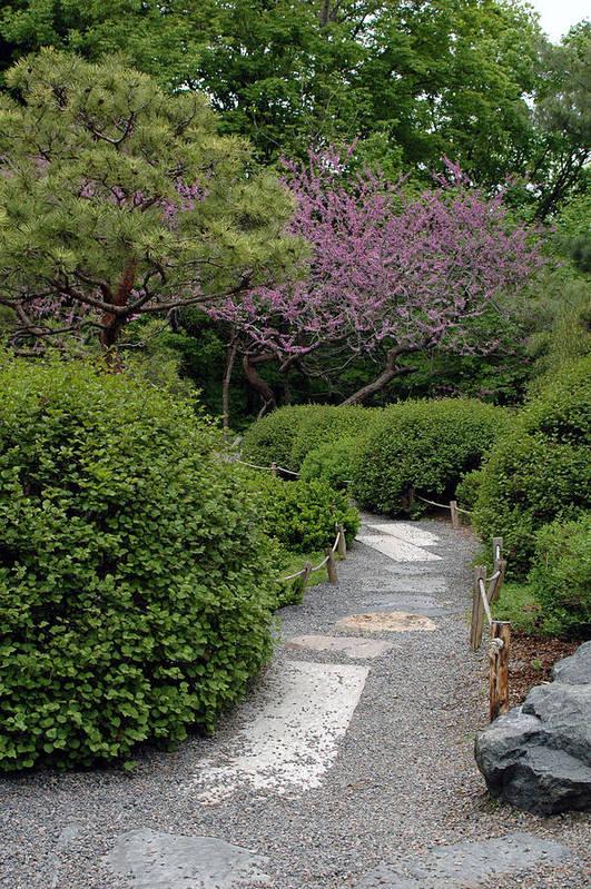 Japanese Garden Art Print featuring the photograph Japanese Garden I by Kathy Schumann