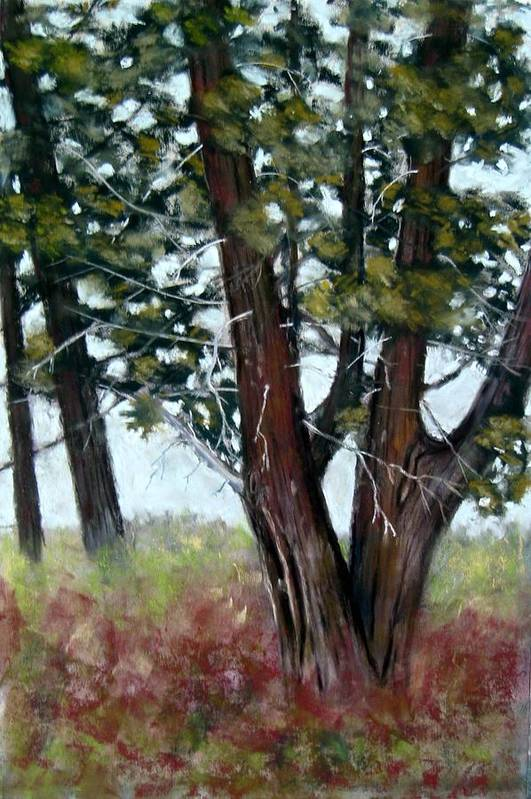 Landscape Art Print featuring the painting Juniper by Carl Capps
