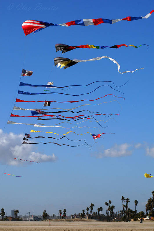 Clay Art Print featuring the photograph Kite Season by Clayton Bruster