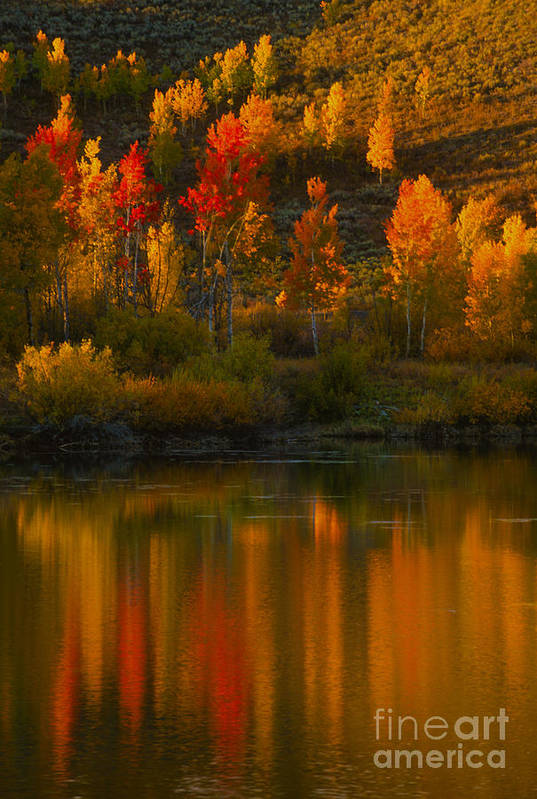 Grand Teton Art Print featuring the photograph Last Light At Oxbow Bend by Sandra Bronstein