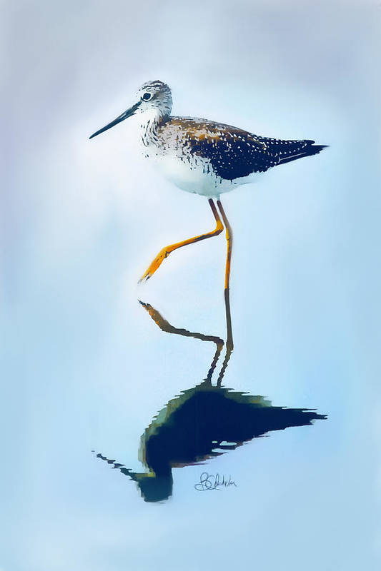 Lesser Yellow Legs Bird Art Print featuring the painting Lesser Yellow Legs Water Shadow by Barbara Chichester