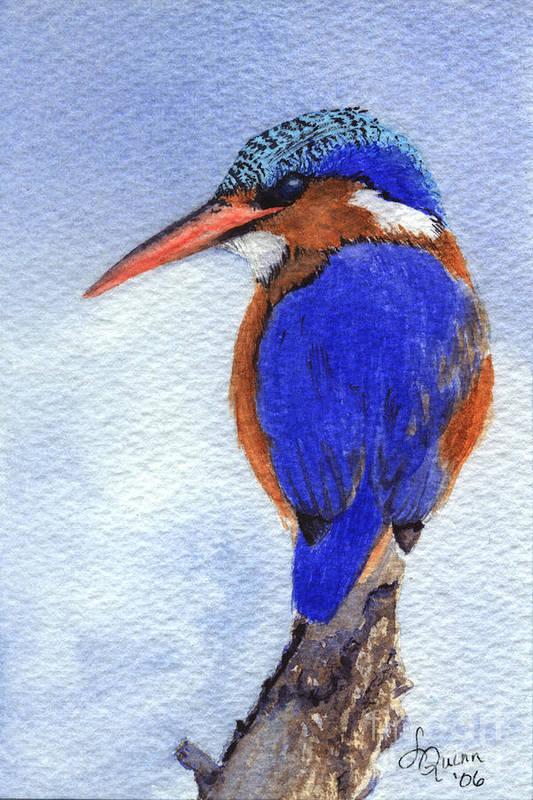 Bird Art Print featuring the painting Malachite Kingfisher by Lynn Quinn