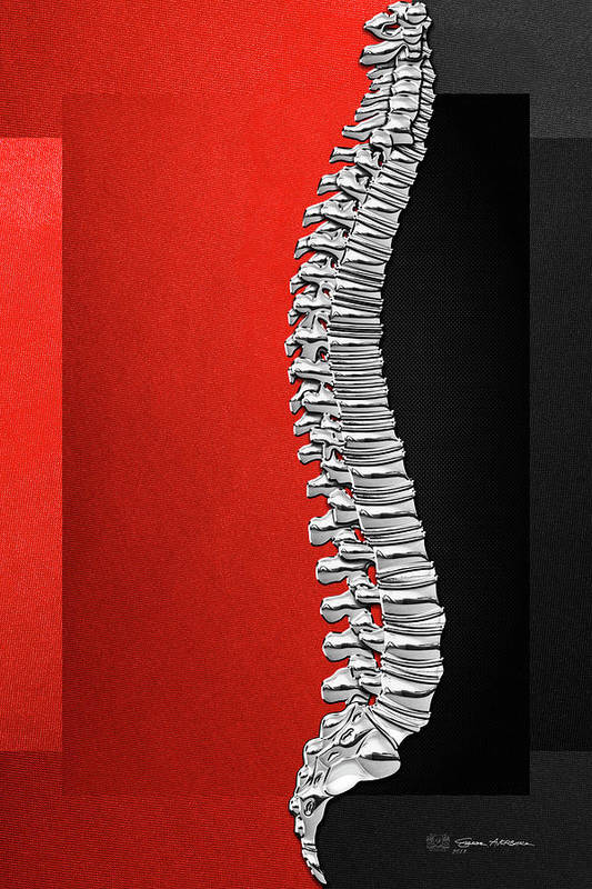 'memento Mori' Collection By Serge Averbukh Art Print featuring the digital art Memento Mori - Silver Human Backbone Over Red And Black Canvas by Serge Averbukh