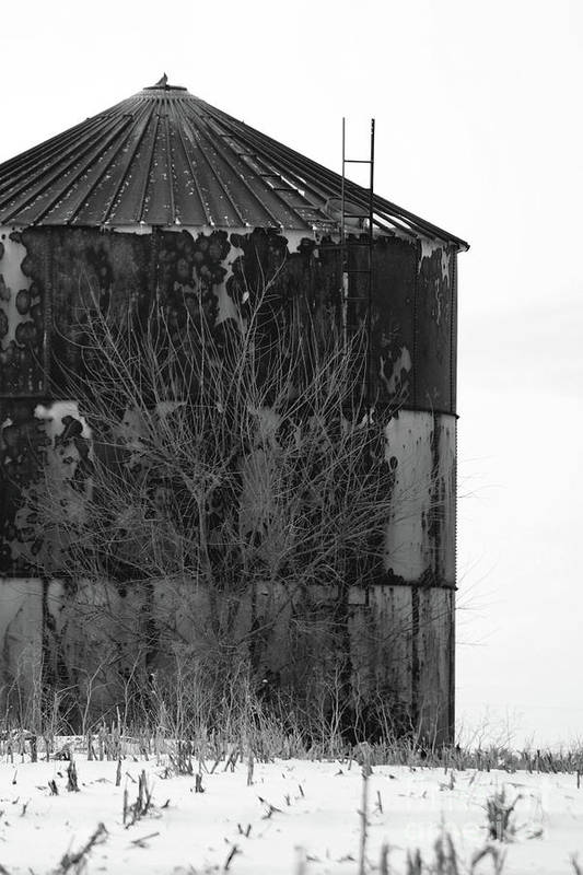 Rural Art Print featuring the photograph Metal Storage by Alan Look
