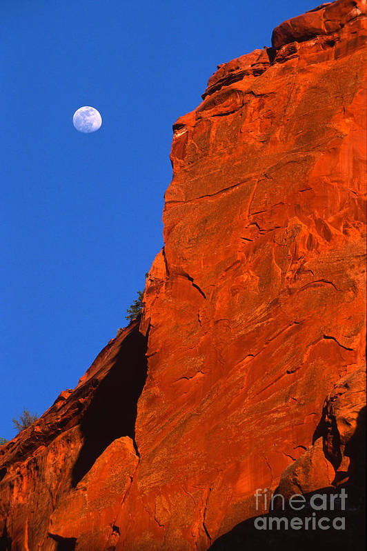Full Moon Art Print featuring the photograph Moonrise In Grand Staircase Escalante by Sandra Bronstein