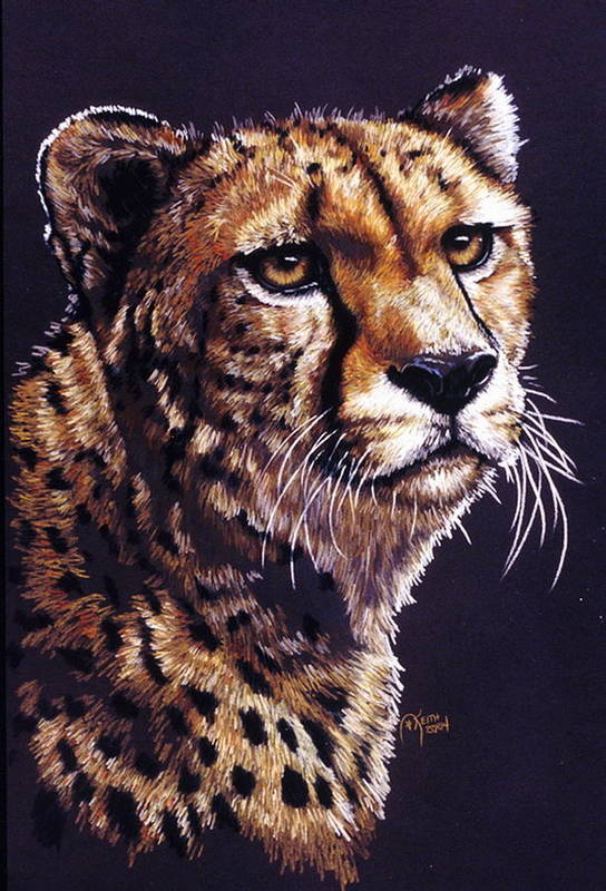 Cheetah Art Print featuring the drawing Movin On by Barbara Keith