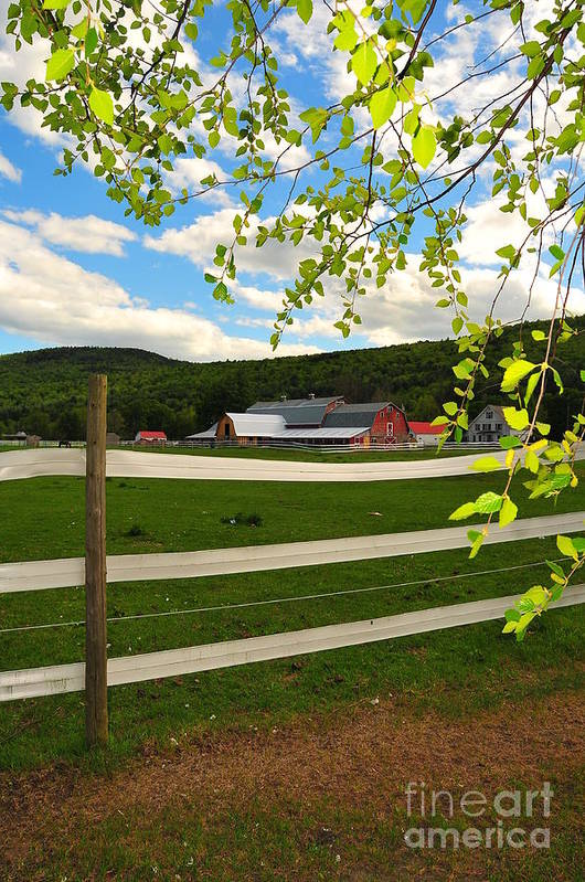 Agriculture Art Print featuring the photograph New England Farm by Catherine Reusch Daley