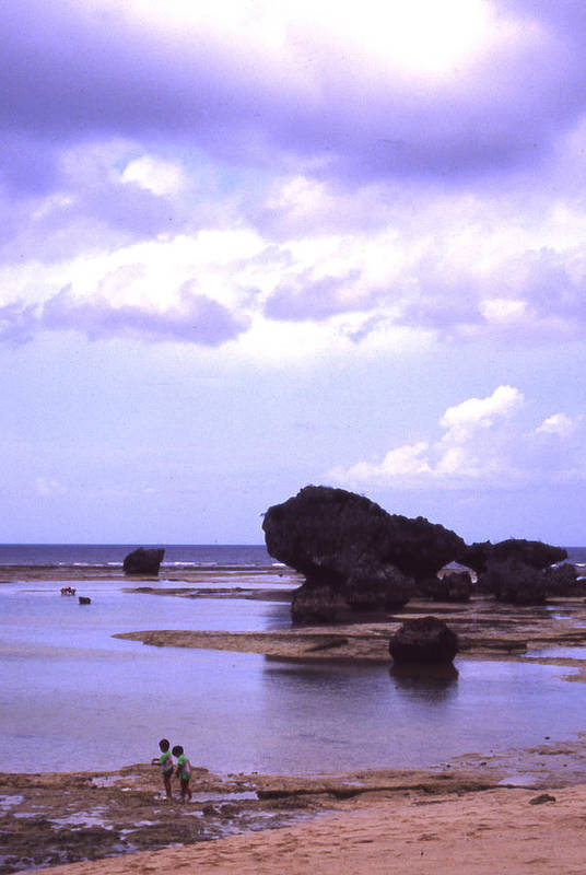 Okinawa Art Print featuring the photograph Okinawa Beach 20 by Curtis J Neeley Jr