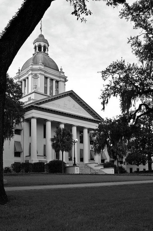 Black And White Photography Art Print featuring the photograph Old Florida State Capitol by Wayne Denmark