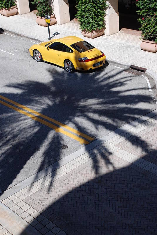 Porsche Art Print featuring the photograph Palm Porsche by Rob Hans