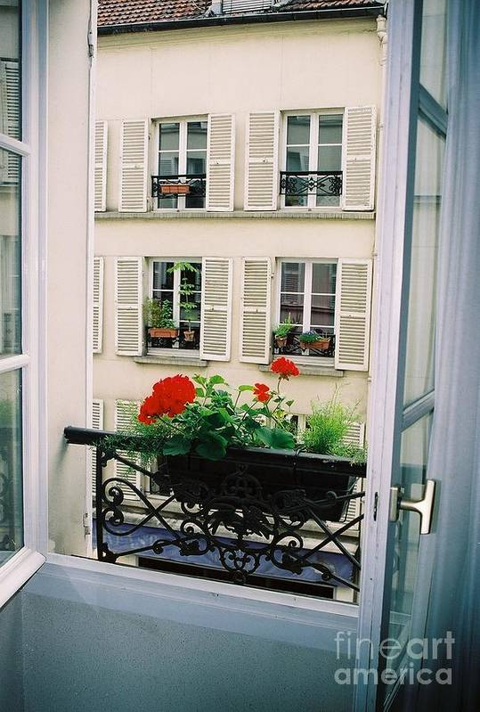 Window Art Print featuring the photograph Paris Day Windowbox by Nadine Rippelmeyer