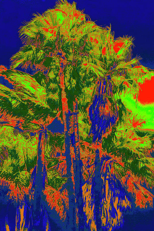 Palms Art Print featuring the photograph Parking Lot Palms 1 15 by Gary Bartoloni