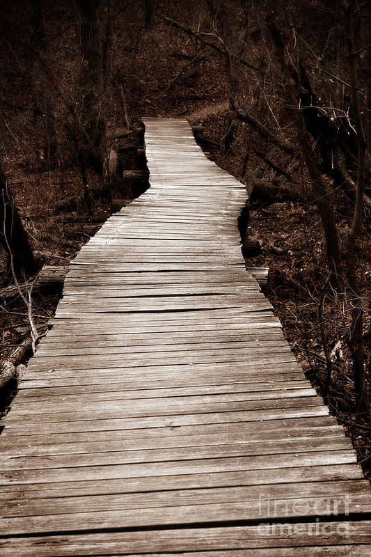 Path Art Print featuring the photograph Path To Nowhere by Jeannie Burleson