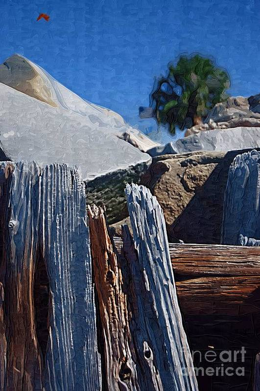 Petrified Wood Art Print featuring the photograph Petrified Wood by Donna Bentley