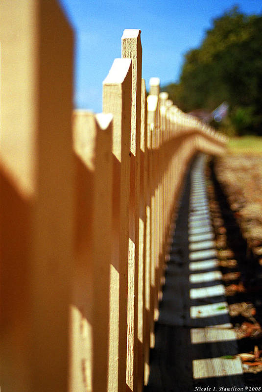 Fence Art Print featuring the photograph Picket Fence by Nicole I Hamilton