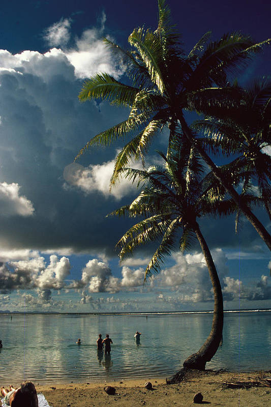 Island; Paradise; Beach; Palms; Palm; Palm Trees; Calm Water; Tropical; Swimmers; Vacation; Ideal; T Art Print featuring the photograph Pigeon Point On Tobago by Carl Purcell