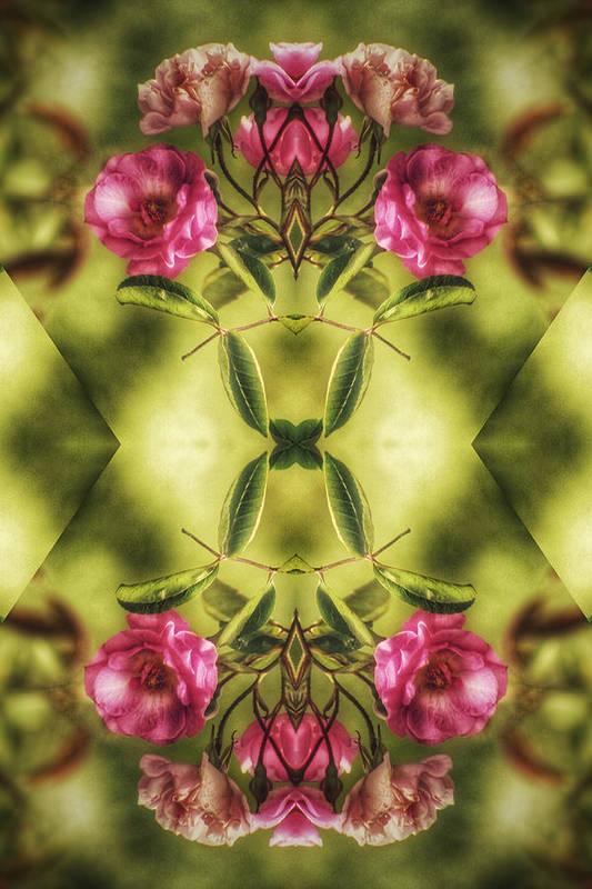 Flower Art Print featuring the digital art Rambling Rose by Brenda Wilcox aka Wildeyed n Wicked