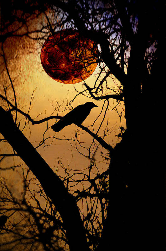 Raven Moon Art Print featuring the photograph Raven Moon by Bill Cannon
