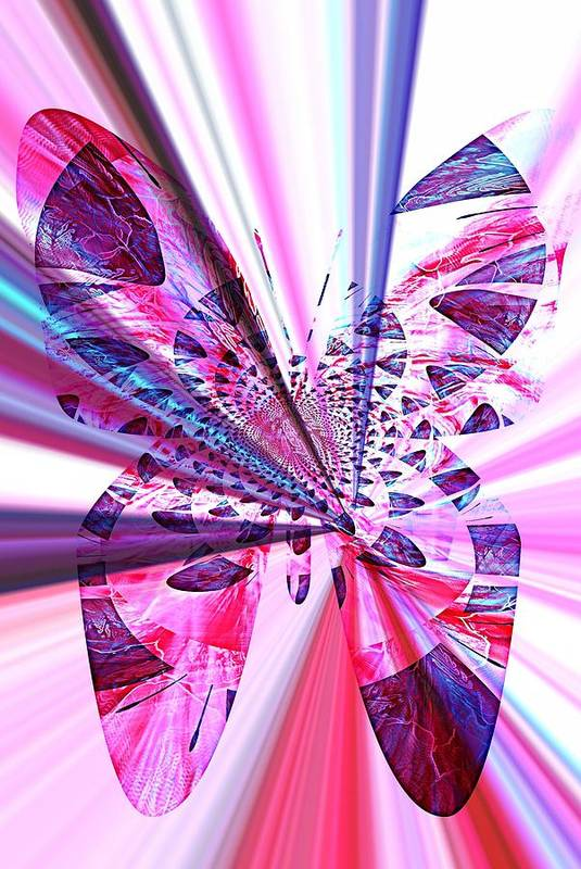 Rays Art Print featuring the photograph Rays Of Butterfly by Amanda Eberly-Kudamik