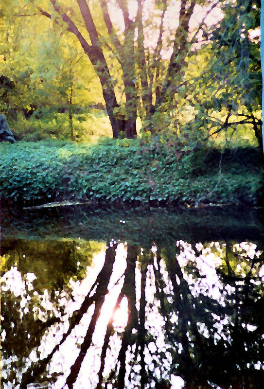 Landscape Art Print featuring the photograph Reflections At Wyeth by Ellen Lerner ODonnell