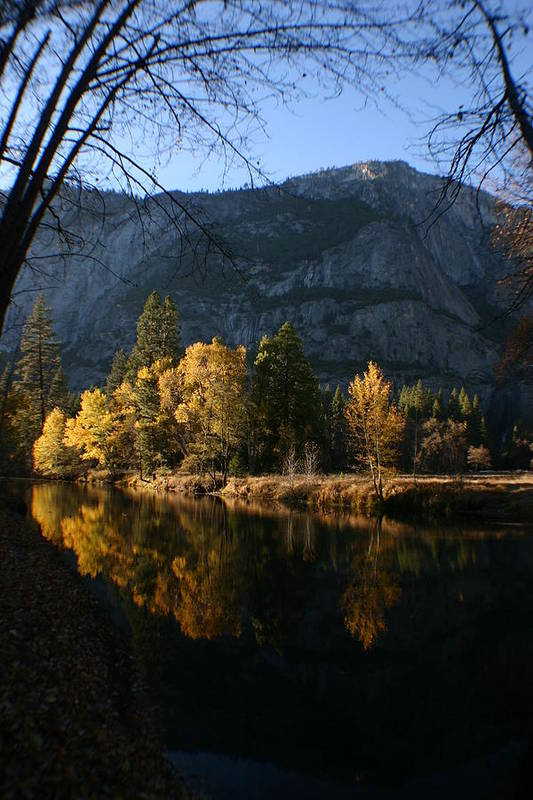 Yosemite Art Print featuring the photograph Reflections by Travis Day