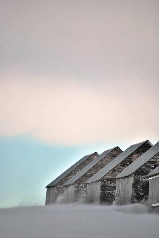 Snow Storm Art Print featuring the photograph Repetitive by Evelina Popilian