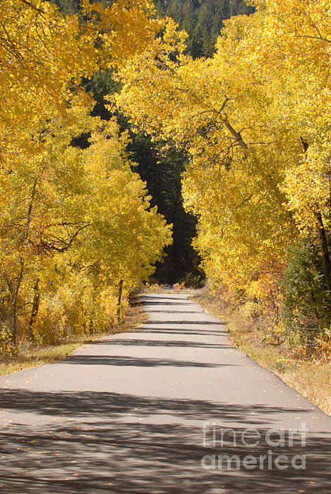 Autumn Art Print featuring the photograph Road To Autumn by Dennis Hammer