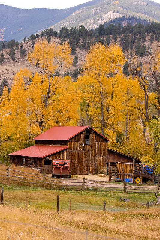 Rustic Art Print featuring the photograph Rocky Mountain Barn Autumn View by James BO Insogna