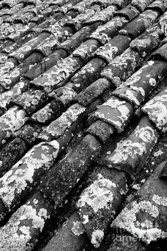 Ceramics Art Print featuring the photograph Roof Tiles by Gaspar Avila