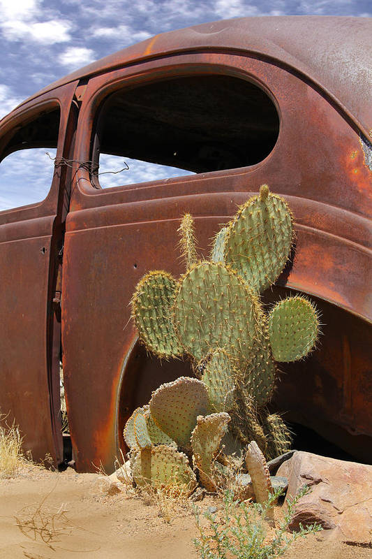 Southwest Art Print featuring the photograph Route 66 Cactus by Mike McGlothlen