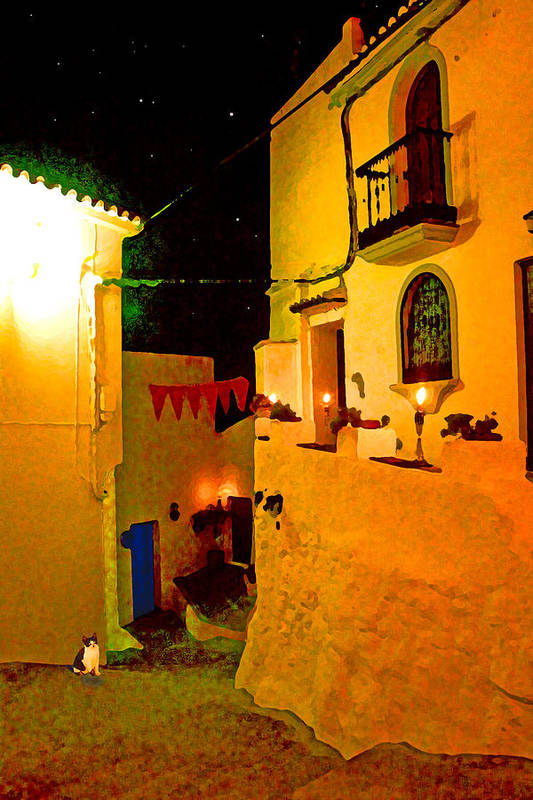 Spain Art Print featuring the photograph Salares By Night With Cat by Mitch France