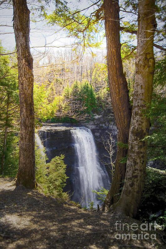 Waterfalls Landscape Art Print featuring the photograph Salmon River Falls by Pat Carosone