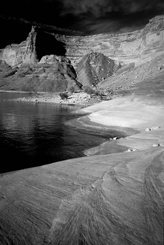 Photography Art Print featuring the photograph Sandstone Shoreline And Cliffs Lake Powell by Tom Fant