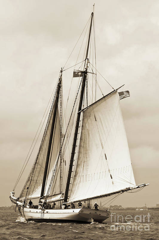 Schooner Art Print featuring the photograph Schooner Sailboat Spirit Of South Carolina Sailing by Dustin K Ryan