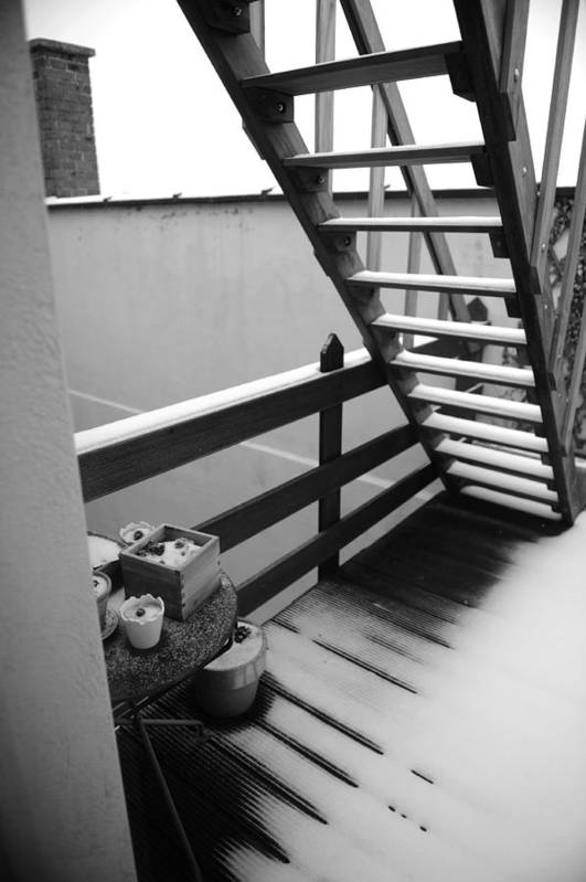 Stairs Art Print featuring the photograph Shelter by Jessica Rose
