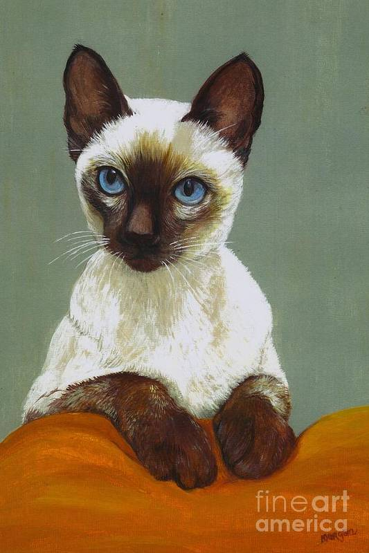 Siamese Art Print featuring the painting Siamese Cat by Morgan Fitzsimons