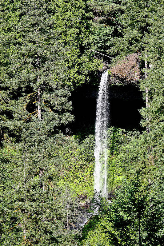 Waterfalls Art Print featuring the photograph Silver Falls Or by Liz Santie